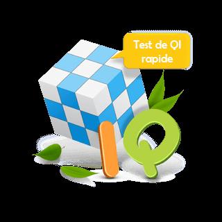 Test de QI rapide court