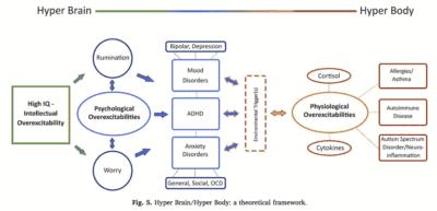 hyperactivite hypersensibilite