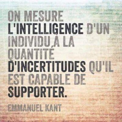 kant intelligence definition