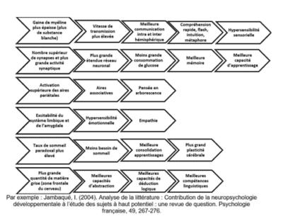particularites neuropsychologiques surdoue