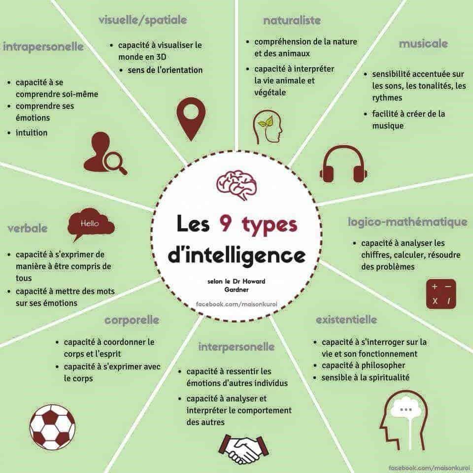 intelligences multiples : les 9 types d'intelligence (Dr Howard Gardner)