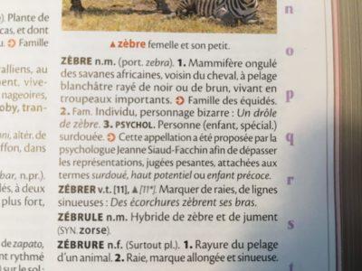 zebre larousse
