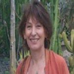 Illustration du profil de zanzibahr
