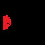 Logo du groupe 85 – Vendée – La Roche-sur-Yon
